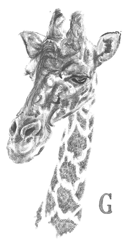Giraffe 600 edited G right small