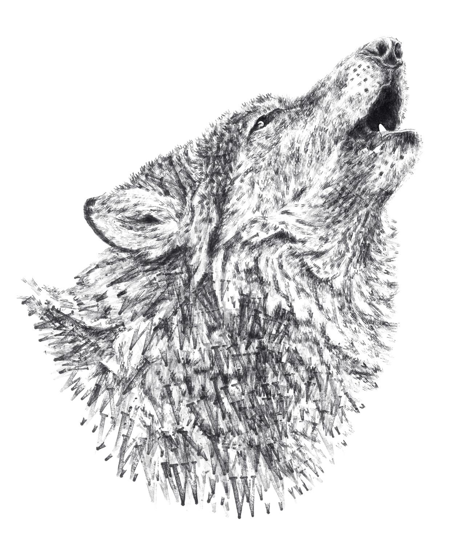 Wolf edited sml