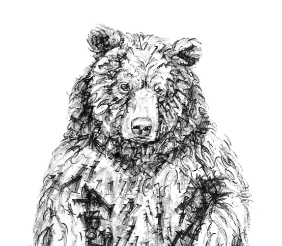 Bear other cover image