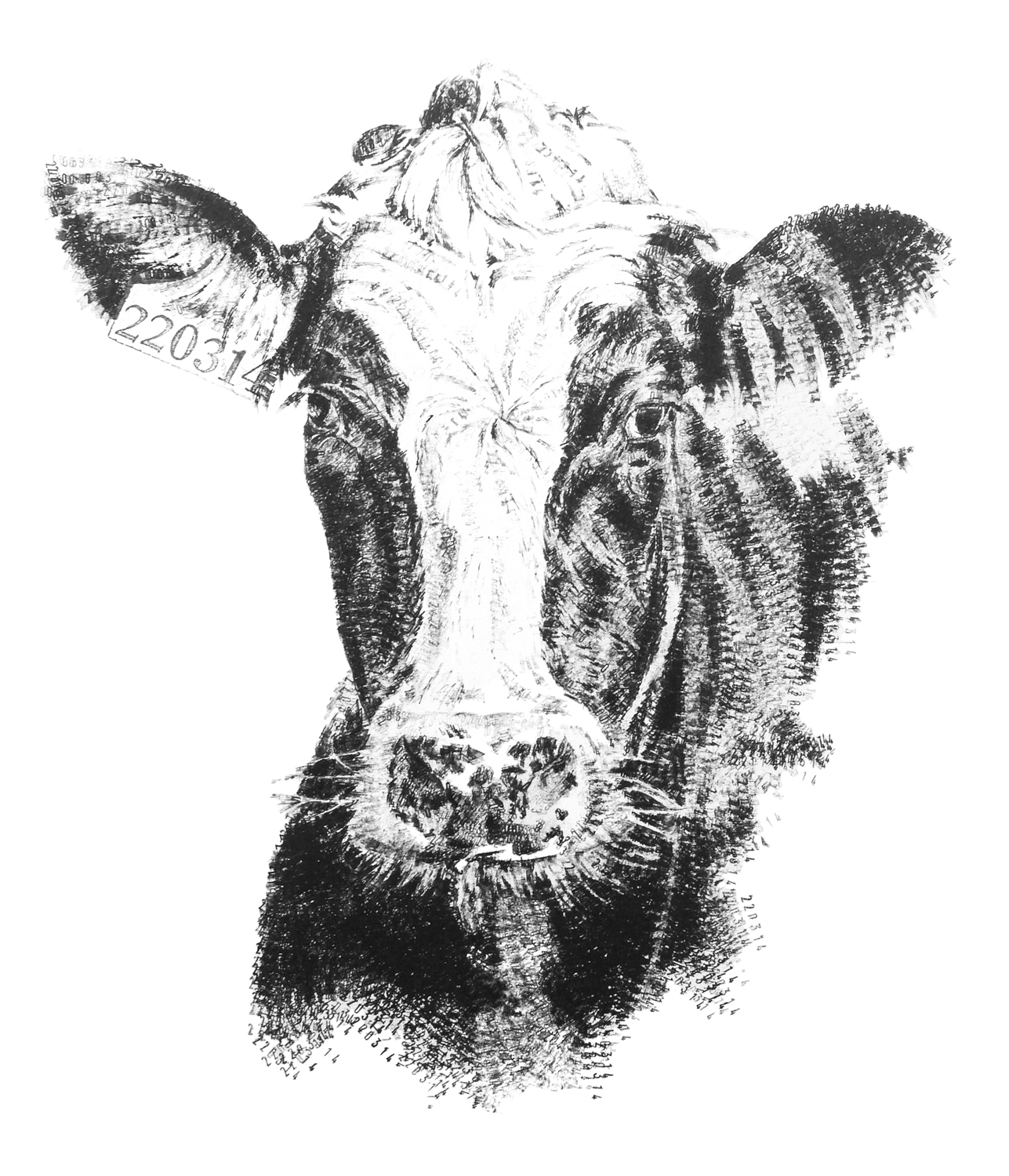 Friesian Cow, 2016, date stamp and ink on paper, 56 x 42 cm